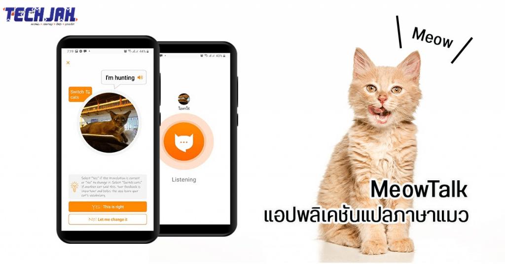คุยกับแมวด้วยภาษาแมวผ่านแอพ MeowTalk